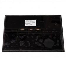 Дисплей AU Optronics B101EW05 V.1 H/W:1A F/W:1